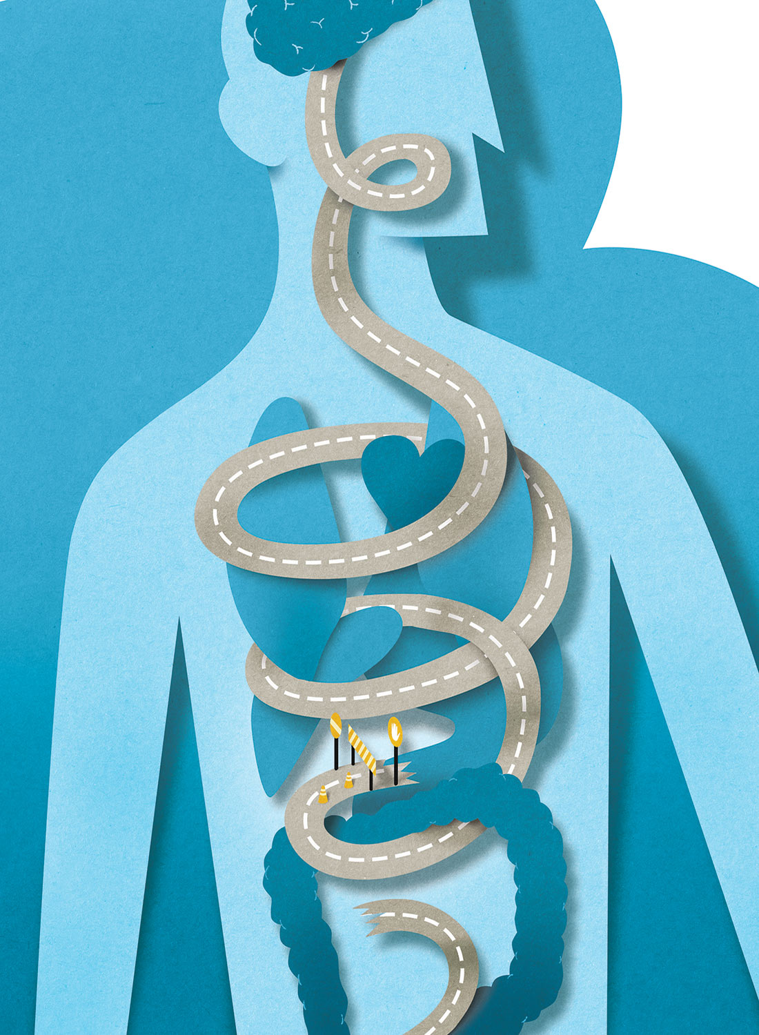 sciam_editoria_digestion_illustration